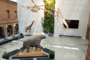Thermacome, 1er système de planchers chauffants-rafraîchissants hydrauliques basse température – Musée Toulouse 3